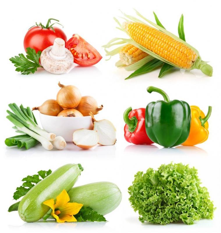 专业蔬菜配送